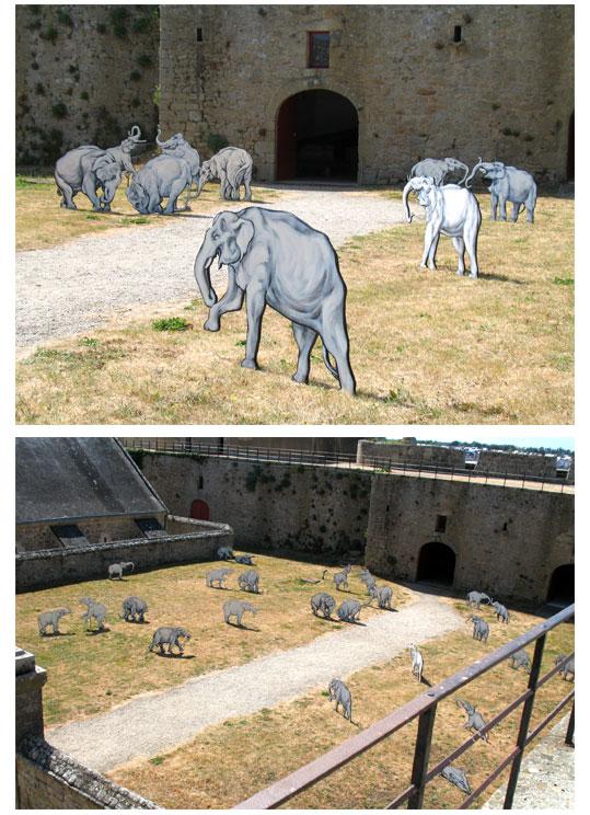 combats-d'elephants
