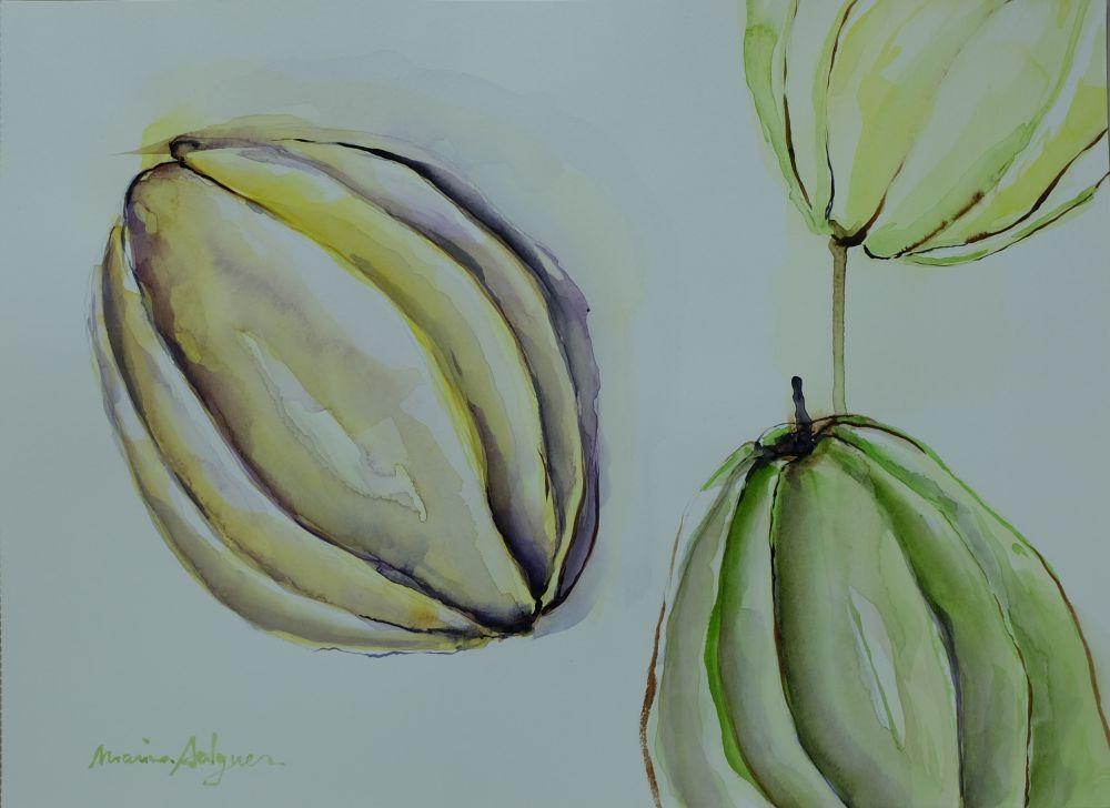 Citrons pelés